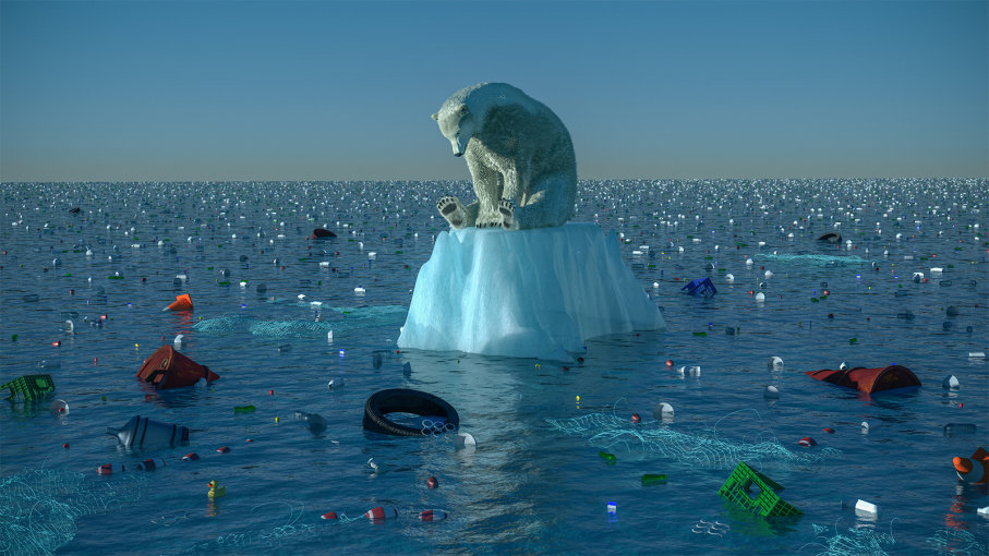 climate-change-bear